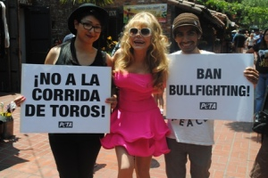 Charo at a recent anti-bullfighting protest.
